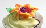 ladybug-cup-cake1
