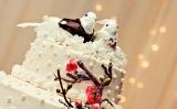 birdcake-low